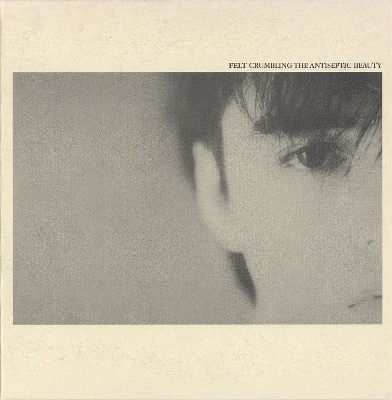 felt, crumbling the antiseptic beauty, 1982