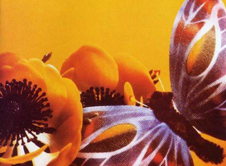 Telex - Sex (1981)