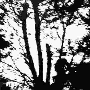 Cindytalk, Camouflage Heart, 1984