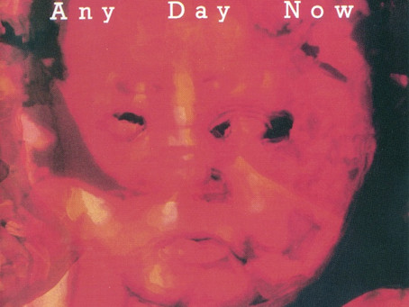Legendary Pink Dots - Any Day Now (1987)