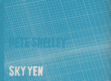Pete Shelley - Sky Yen (1980)