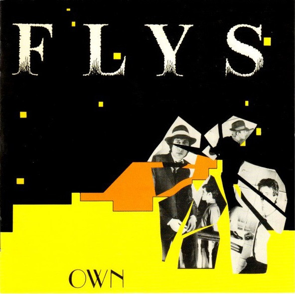 the flys, own, 1979