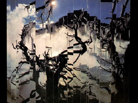 Bauhaus - Burning from the Inside (1983)