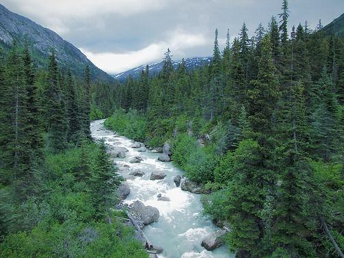 Alaska stream (2).jpg