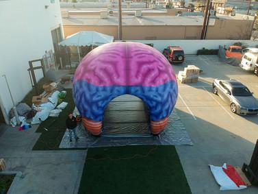 inflatable-brain-tunnel.JPG