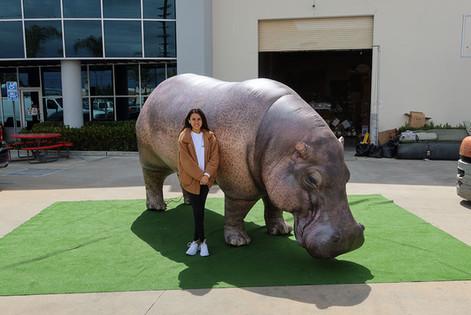 giant-hippopotamus-inflatable.JPG