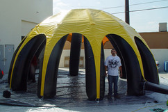 yellow-and-black-dome.JPG