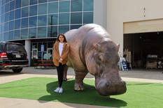inflatable-hippopotamus.JPG