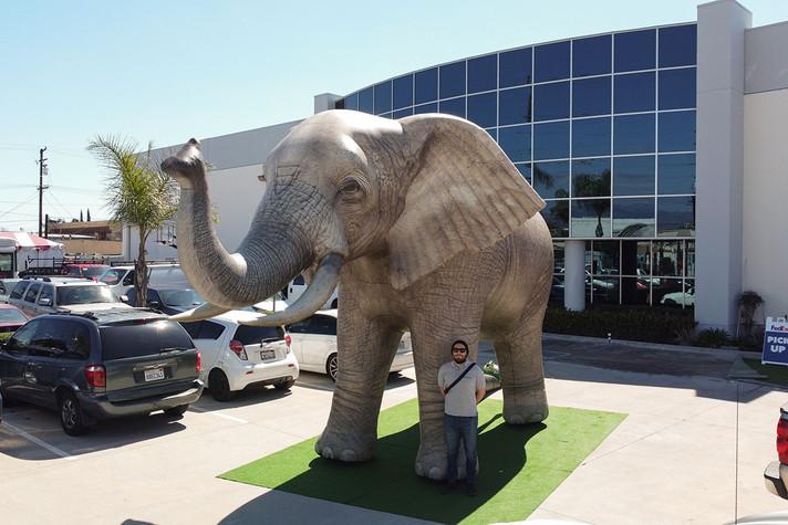 african-elephant-inflatable.JPG