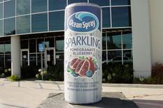 sparkling-cranberry-juice.JPG