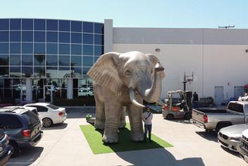 inflatable-elephant.JPG