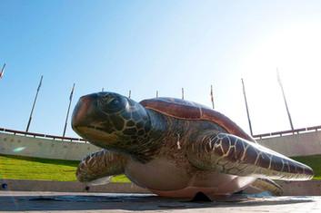 inflatable-sea-animals.JPG