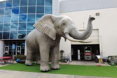 huge-elephant-prop.JPG