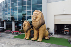 set-of-inflatable-lions.JPG