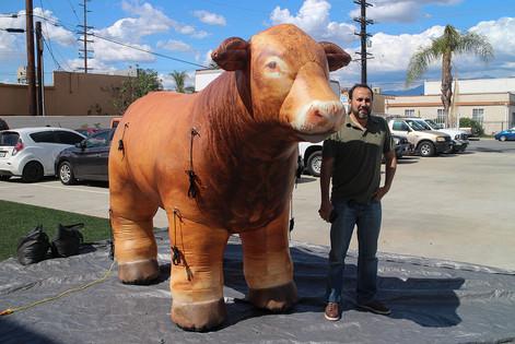brown-cow-inflatable.JPG