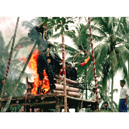 Cremation bull burning at communal cerem