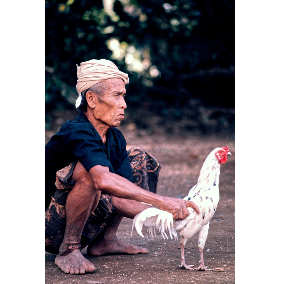 Elderly villager relaxing with fighting