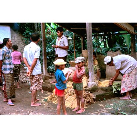 Merchant selling rice in sheaves.jpg