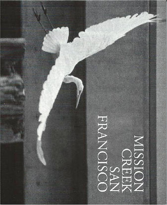 History MCSF Cover cropped.jpg