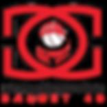 Logo DGB40.png