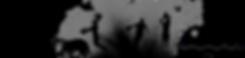 Habillage Pied de Page Noir (2).png
