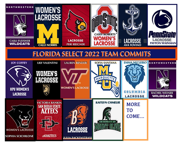 2022 commits.png