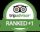 tripadvisor-28209.png