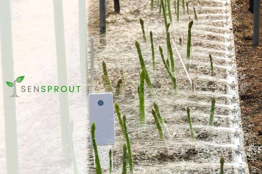 SenSprout 水制御システム