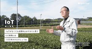 八女伝統本玉露IoTシステム開発・実証事業 インタビュー