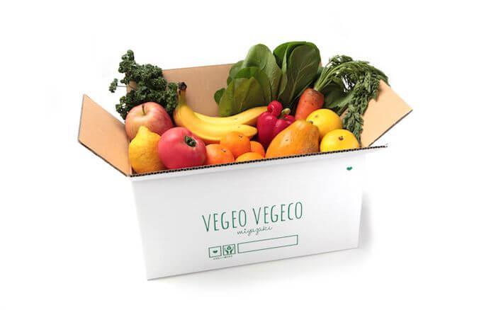 おまかせ野菜10種のセット