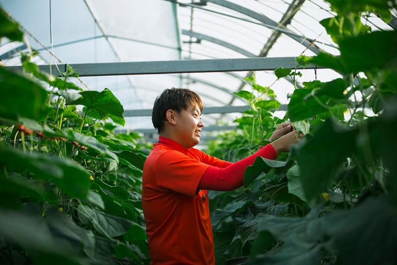 新富町のキュウリ農家、猪俣太一さんは若手農家を中心にスマート農業を研究するチーム「儲かる農業研究会」に所属。農業の見える化に取り組んでいる。