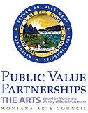 Public Value Partnerships