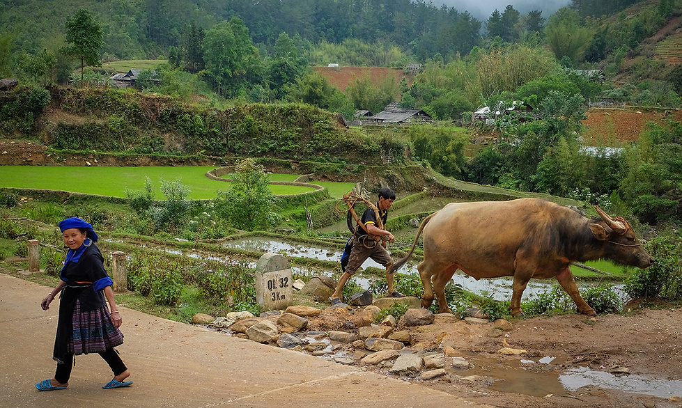 Hmong-Mu-Cang-Chai.jpg