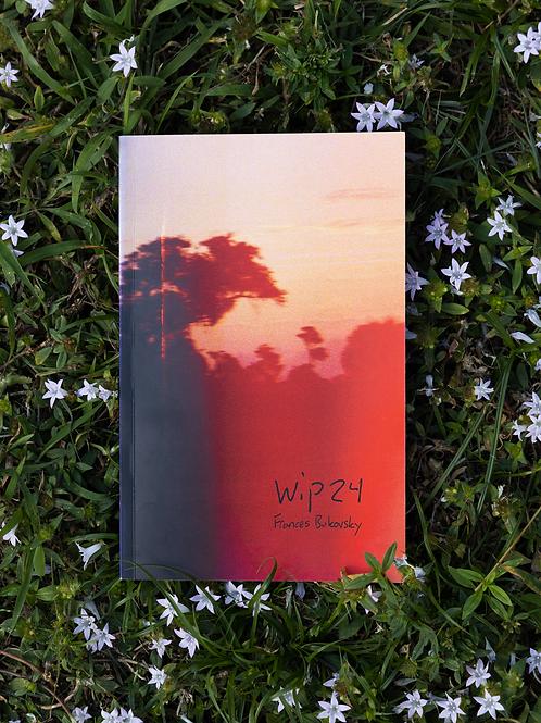 wip24 Film Zine