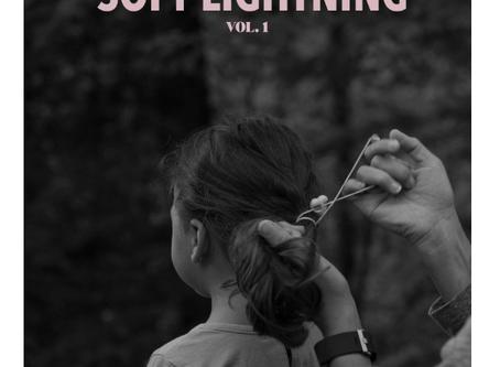 Published in Soft Lightning Studio - Spring 2020