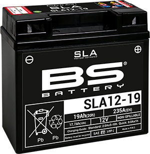 SLA12-19-BS BS Battery