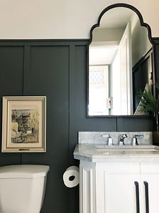 Lisa Clark Design Interior Design Steinbach Winnipeg Manitoba powder room hexagon floor green wall panelling marble countertop top