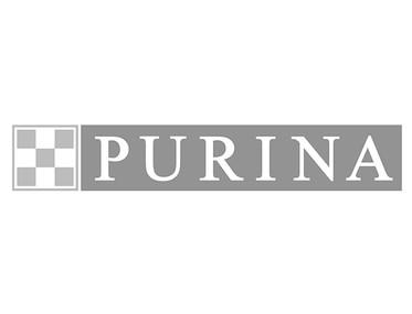 P&R Marktservice Kunde NESTLE