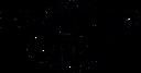 logo - panter case _black.png