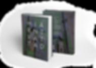 Två stående böcker_2MB.png