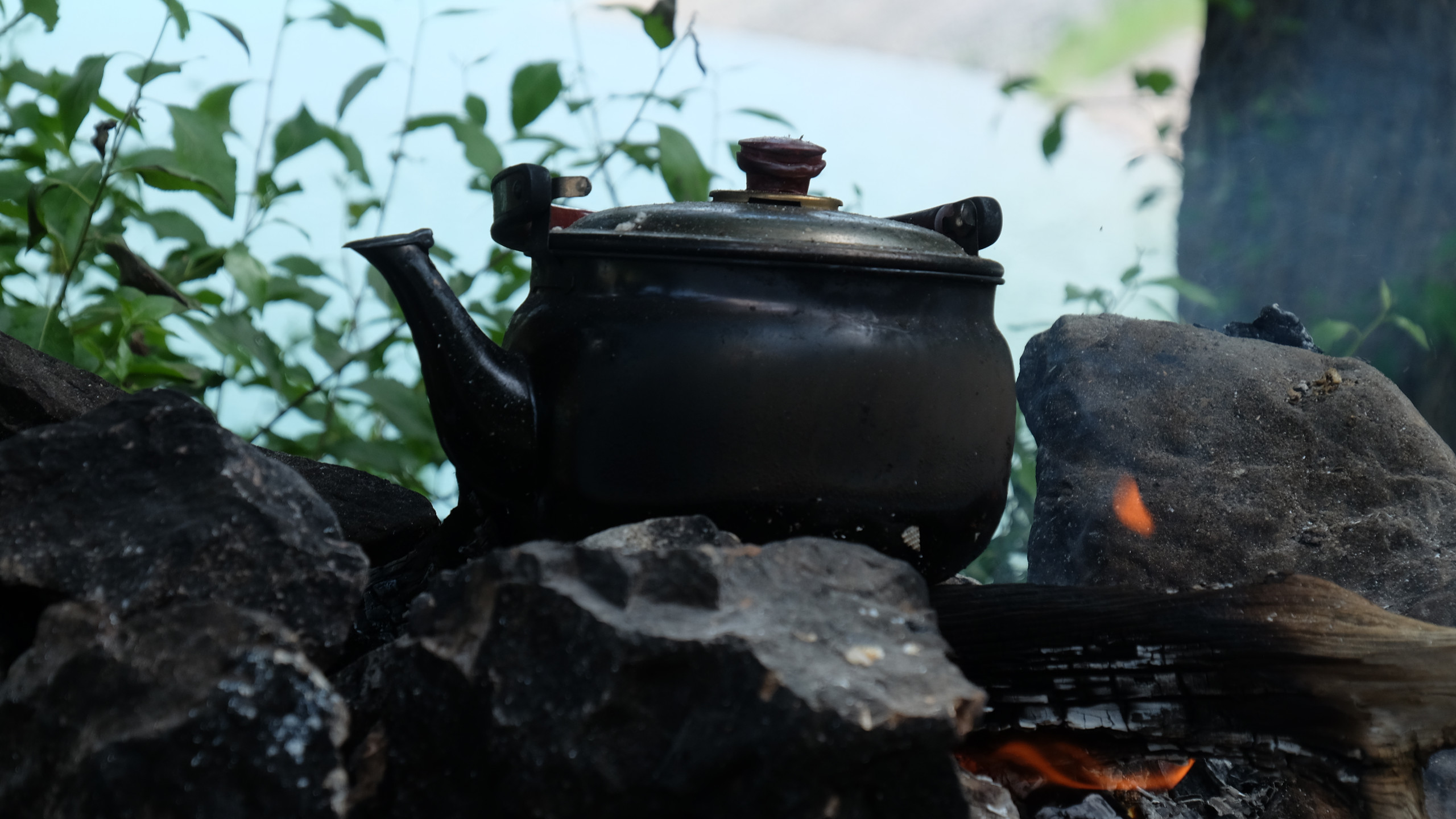 Thé au feu de bois