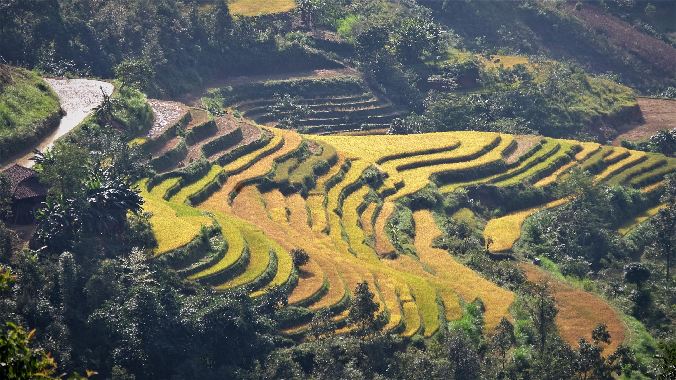Village de Khuoi Khon, ethnie des lolo noirs.