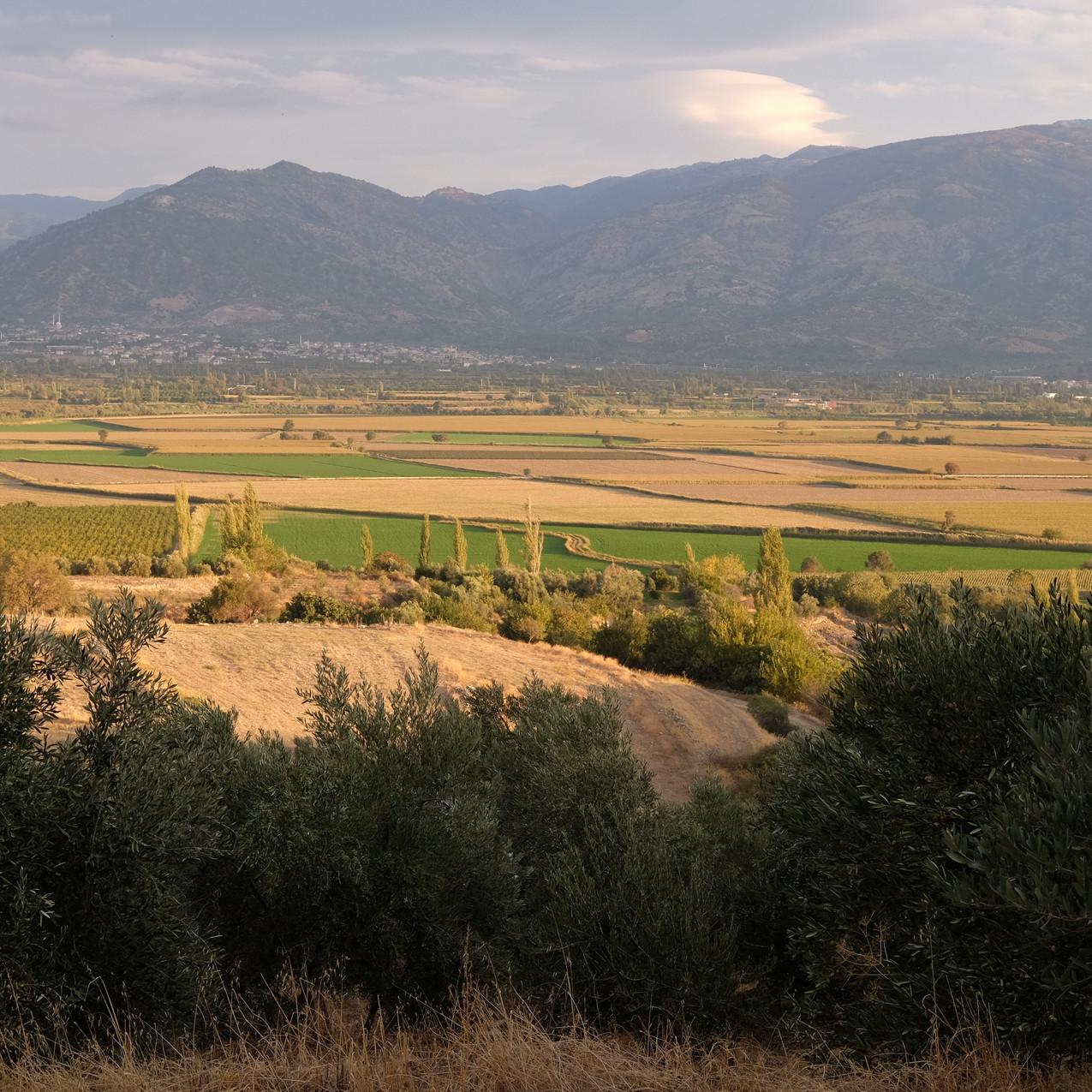 Région d'Aydin