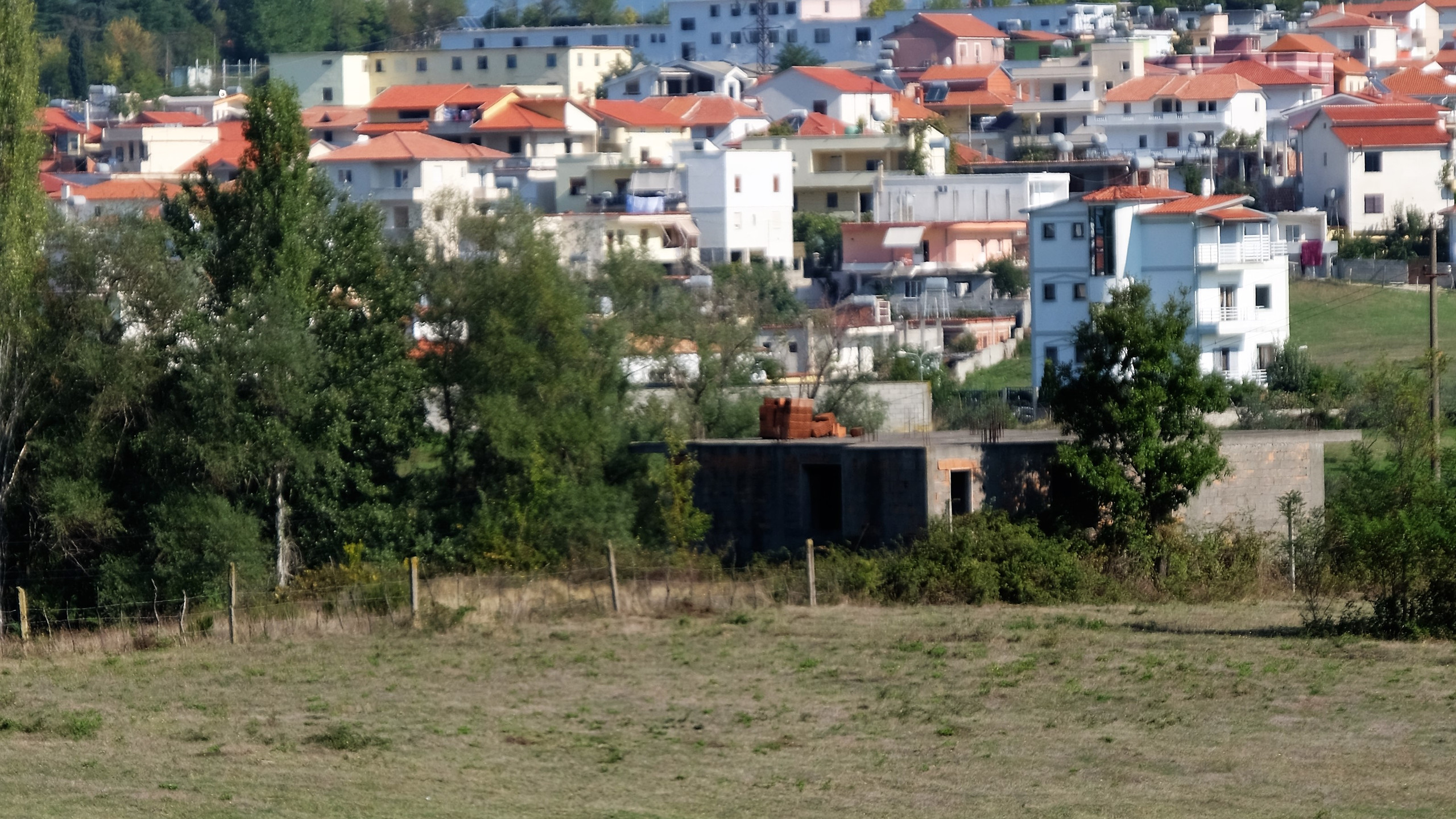 Berger à la périphérie de Tirana