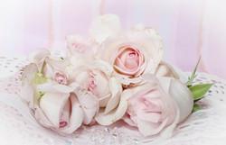 roses-2264615_1920.jpg