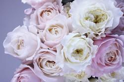 flower-1522260_1920.jpg