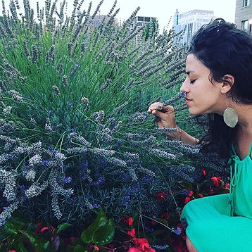 LAVANDER 💜__Boise capitol is rounded by