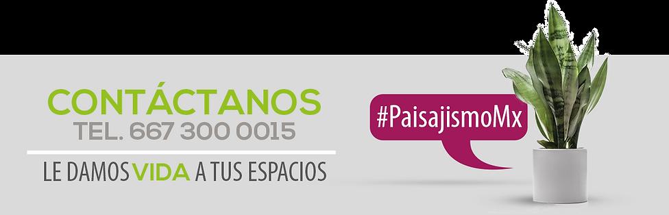 PLANTA CONTACTANOS.png