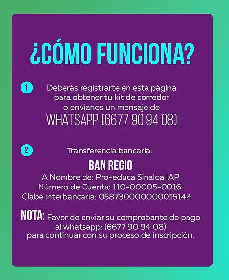 LANDING PROEDUCA COMO FUNCIONAa.jpg