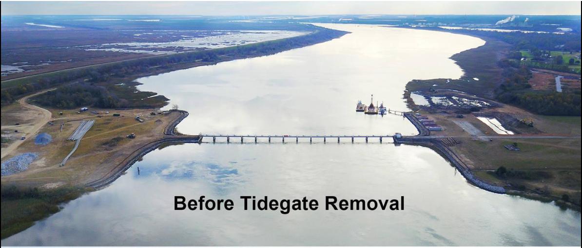 Savannah Harbor Tide Gate Removal - Befo